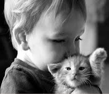 kid kissing kitten